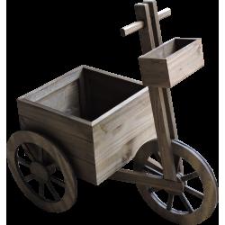 Triciclo Pimenta