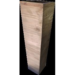 Coluna Monumento